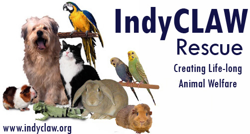 IndyCLAW Rescue Inc